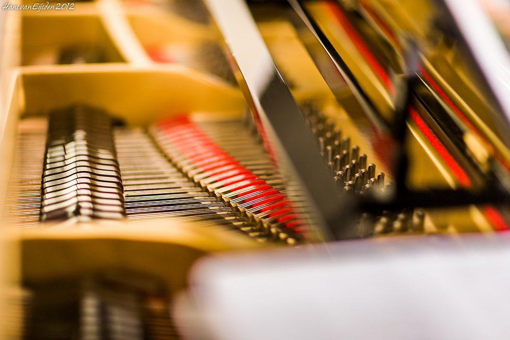 Piano Strings (HvE-20120908-0113)