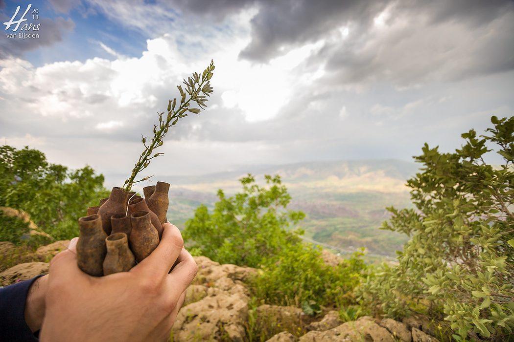 Iraqi Kurdistan (HvE-20130514-0294)