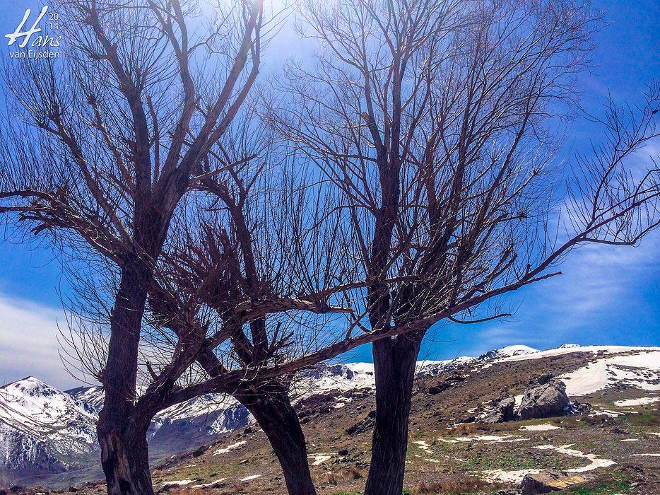 Halgort Mountains (HvE-20140402-2518)