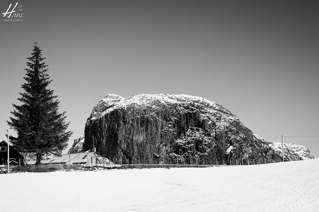 Tree & Rock (HvE-20160226-5710-HDR)